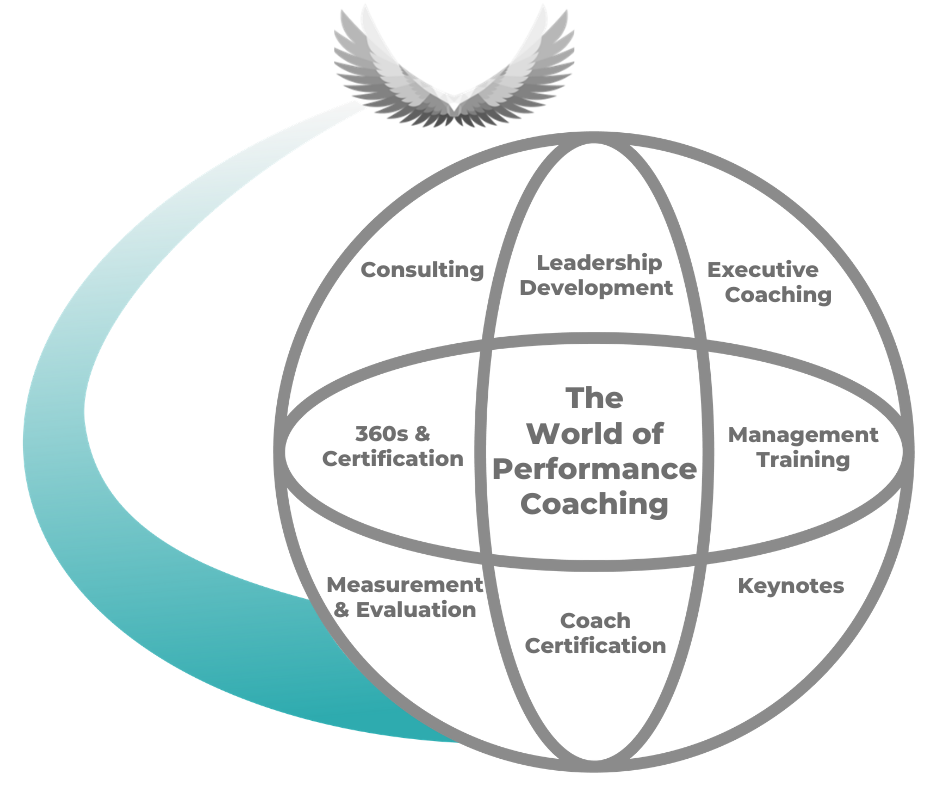 The World of Performance Coaching